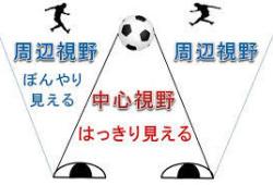 yjimage-3